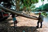 Belize2009-0281-2540