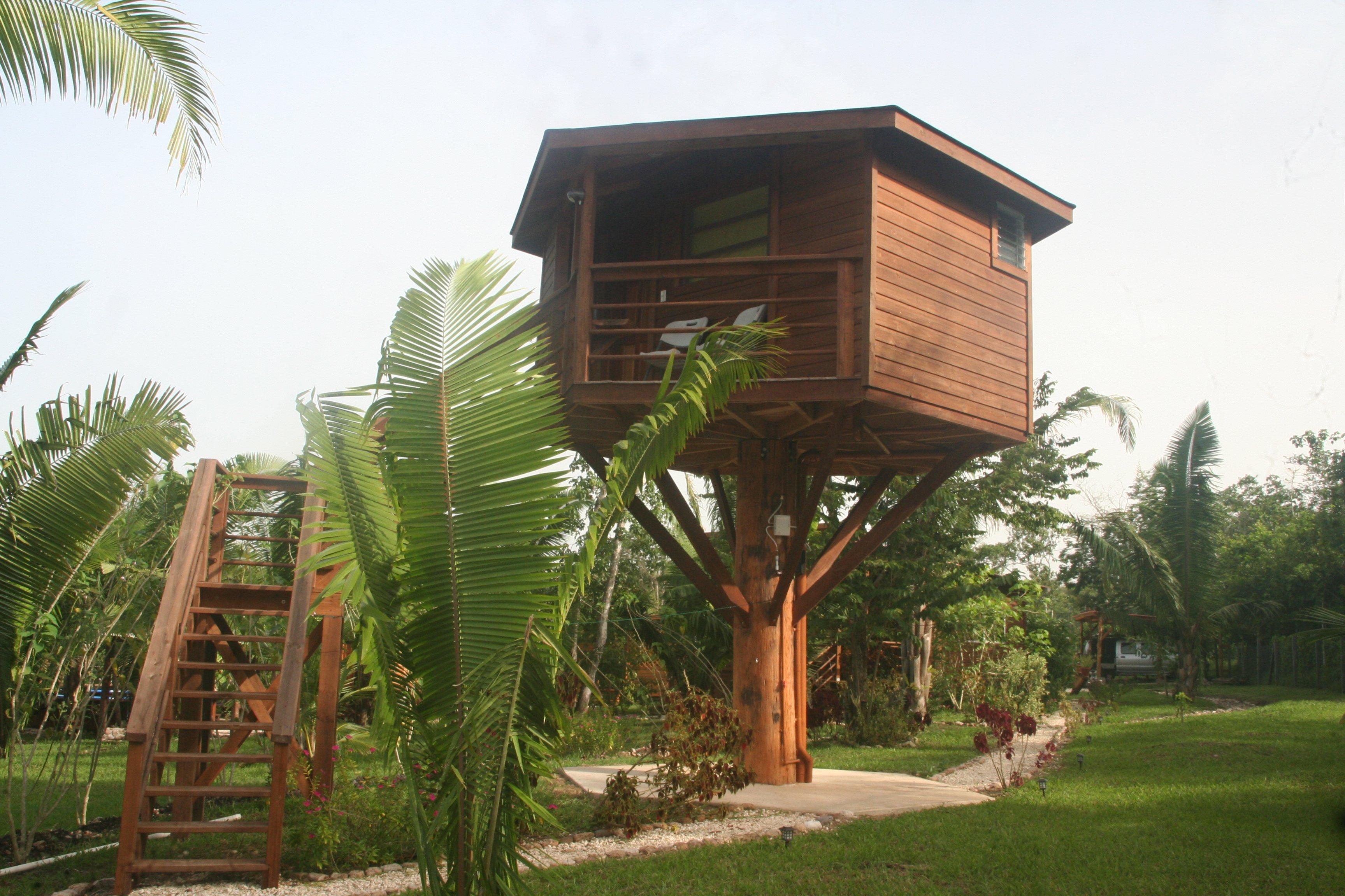 Belize Baumhaus